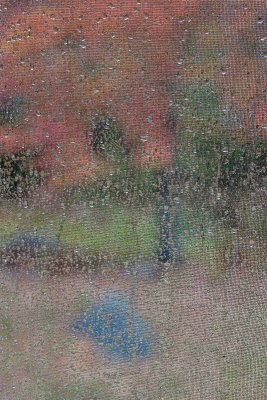Through the Window on a Rainy Autumn Day #2