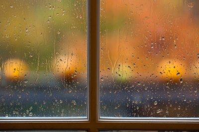 Rainy Autumn Pumpkins #2, Variation 1