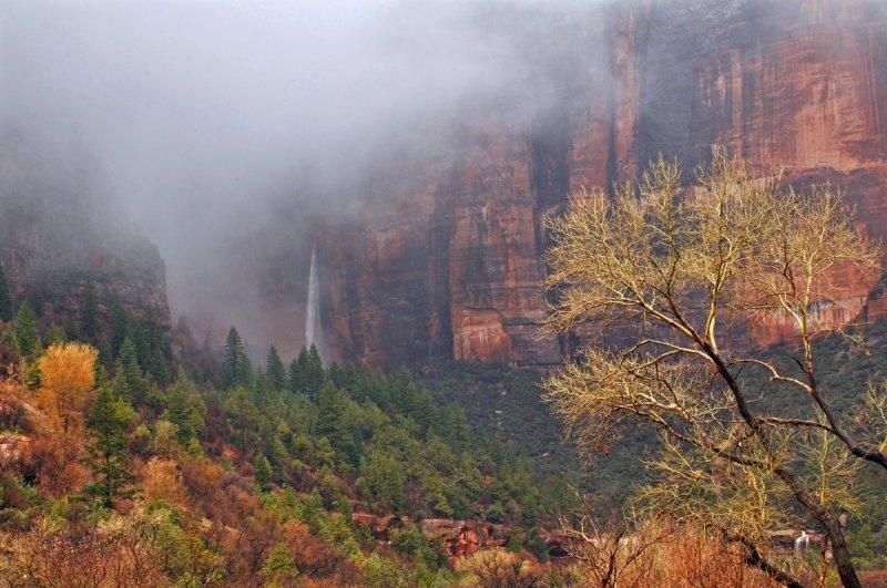 Heaps Canyon, Zion