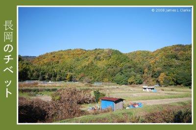 Nagaoka Tibet