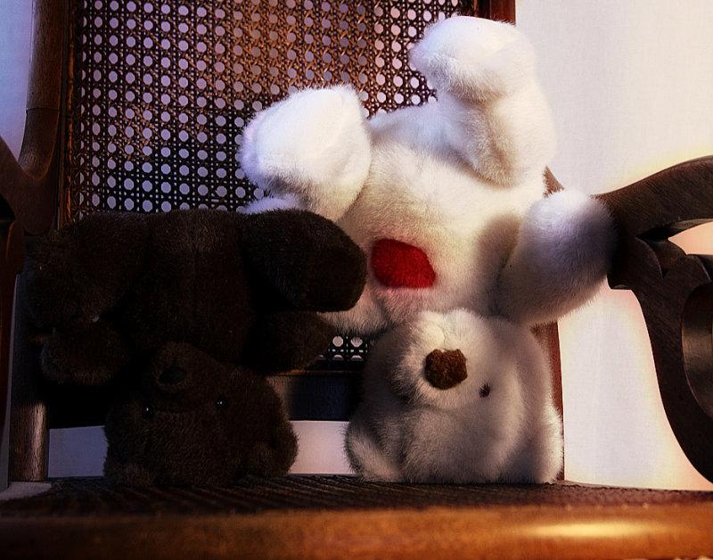Thursdays Totally Informal Transglobal Challenge for February 7, 2008 - Upside Down