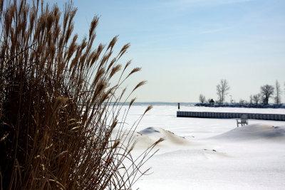 March comes to Michigan