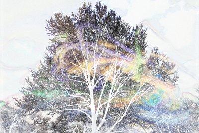 rainbows swirling in snow