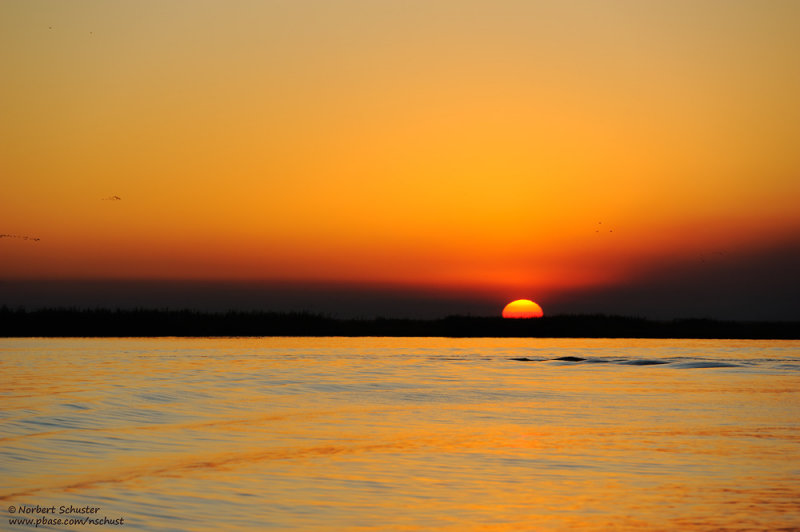 Evening At The Chobe River