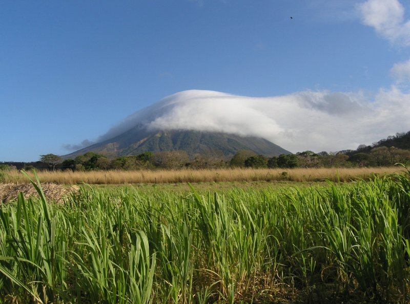 beyond a sugar cane field looms Volcan Concepcion.....