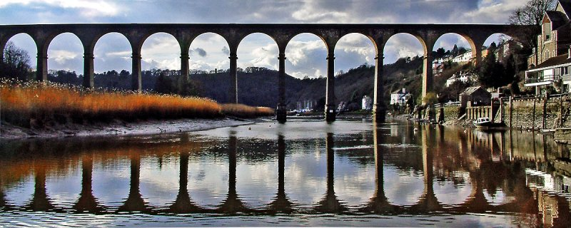 Calstock Viaduct, Devon (8907)