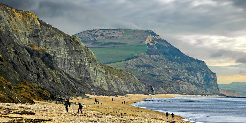Towards Golden Cap, Seatown, Dorset (2831)