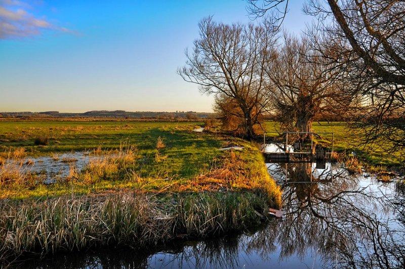 Stream and bridge, near Muchelney (1566)