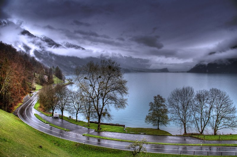 Road, trees and Brienzersee