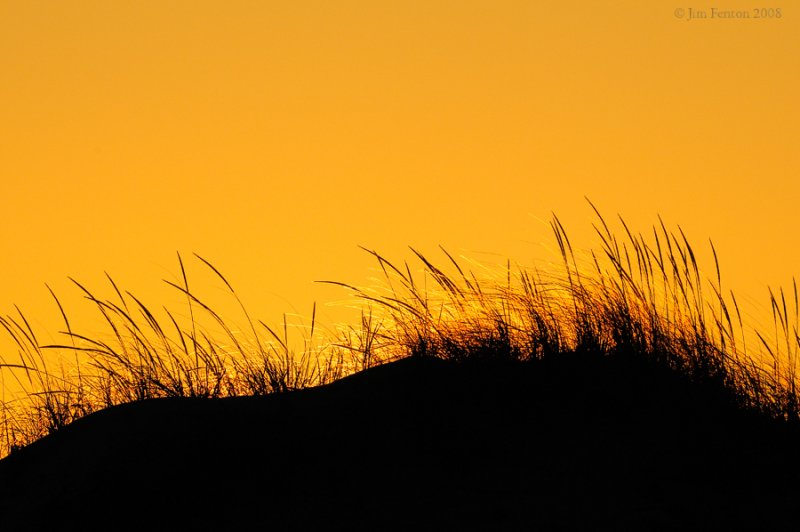 _NW81860 Dunes at Sunset