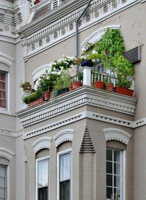 Bay-top garden