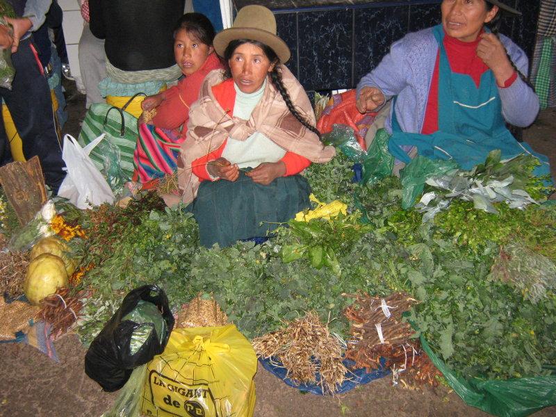 medicinal herbs (Mercado San Pedro)