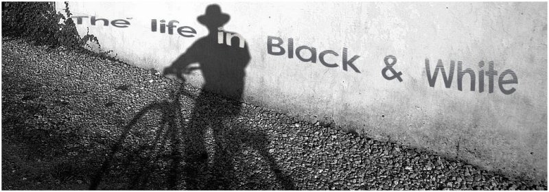 The life in black & white. Banner.