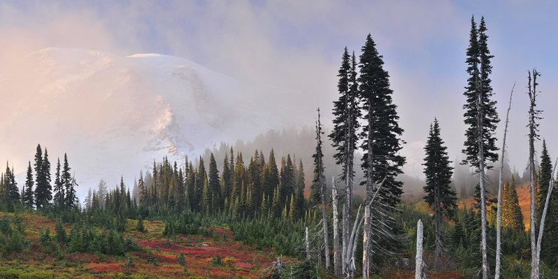 WA - Mt Rainier NP - Foggy Mountainscape 2