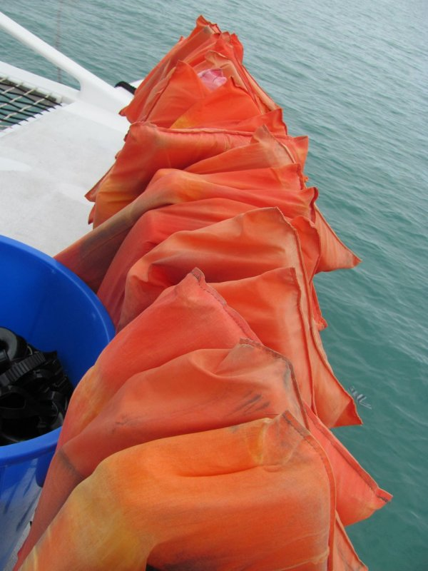 Sosua Snorkel Cruise Lifevests