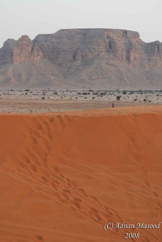 Sand Patterns - 01.JPG