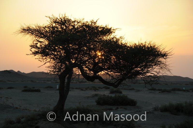 Sunset_@_Aznam.JPG