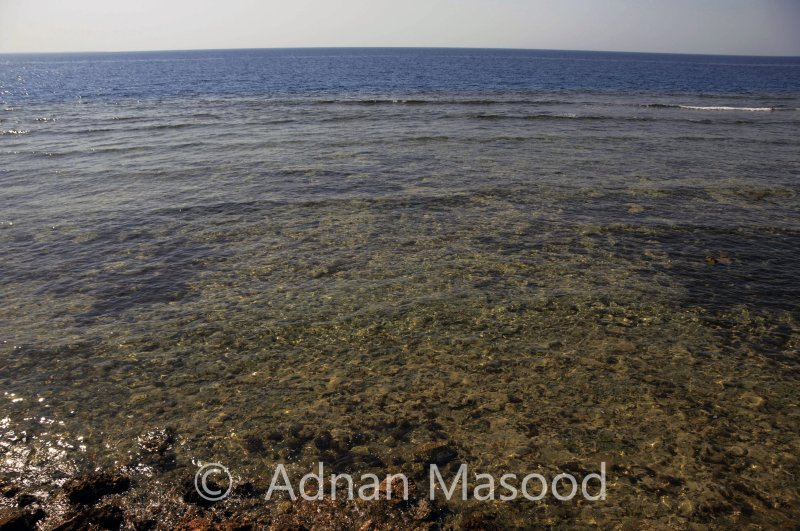 AlWajh_003.jpg