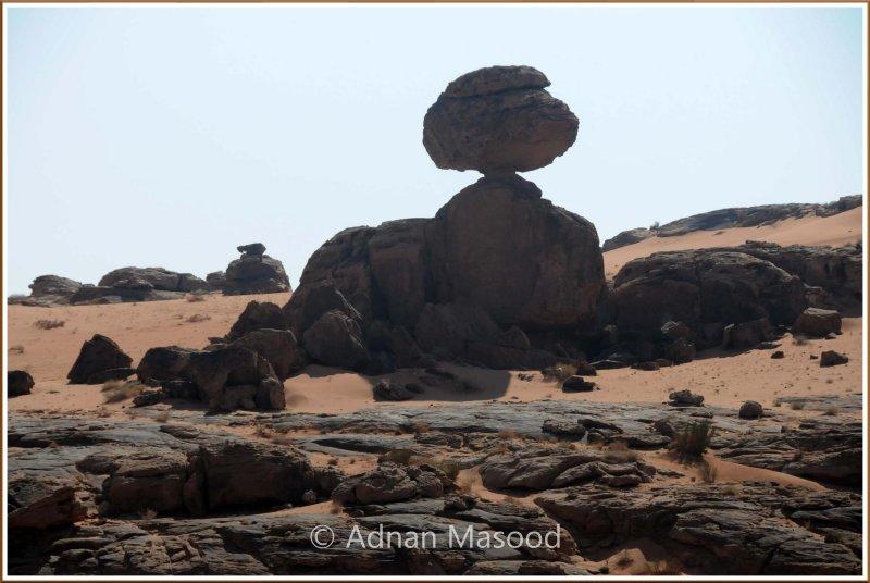 Saudi_abulhou.jpg
