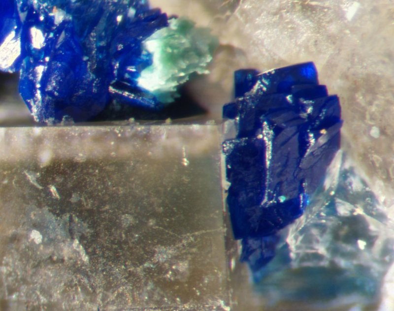 Azurite with fluorite and malachite, field of view approximately 1.5 mm, Great Sled Dale Mine, Keld, Swaledale, North Yorkshire.