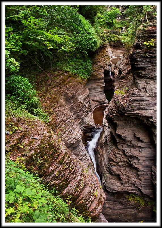 Natures Fertile Gorge Story