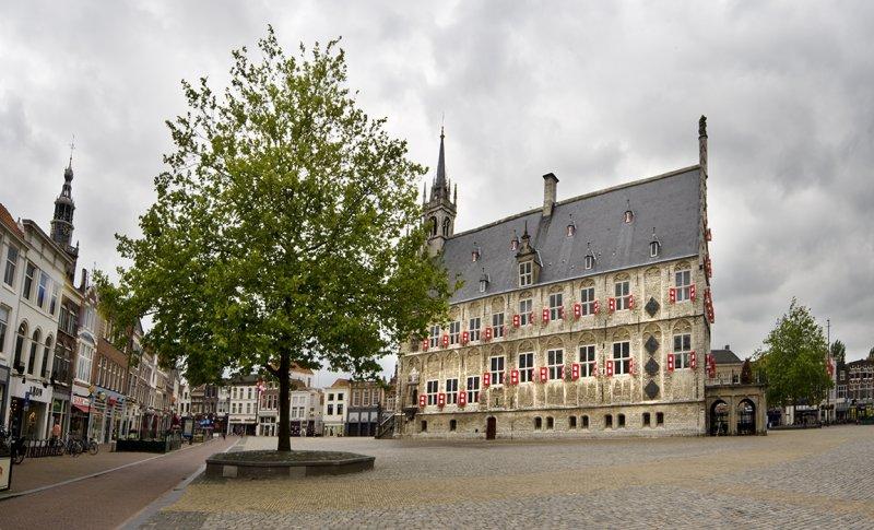gouda, town hall, panorama