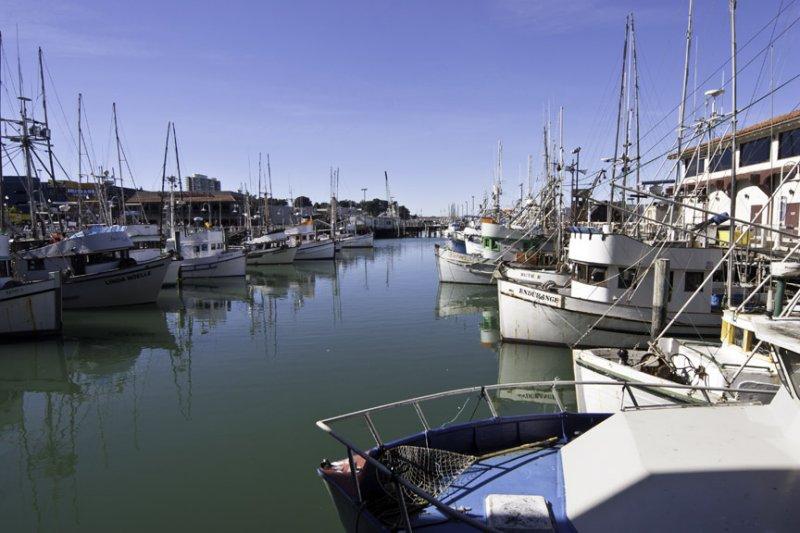 san francisco, fishermans wharf