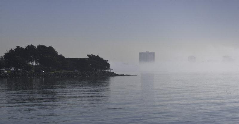 panorama, berkeley marina
