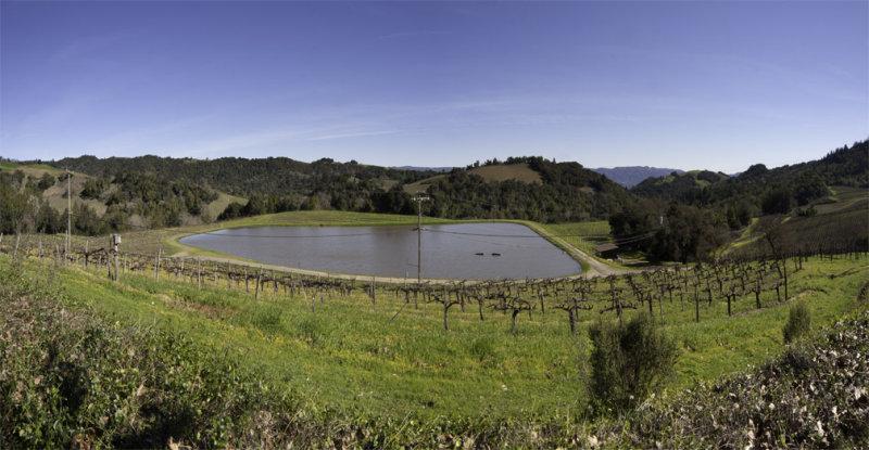 panorama, napa valley winery