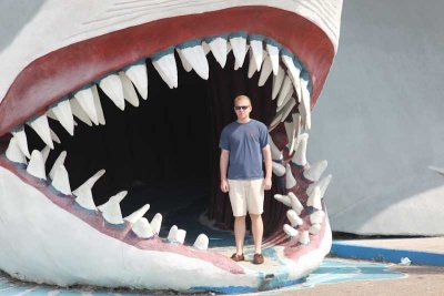 David in the Sharks Mouth