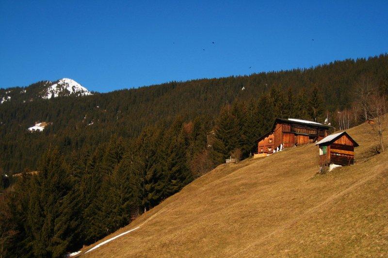 alpage<br><b>high pasture</b>