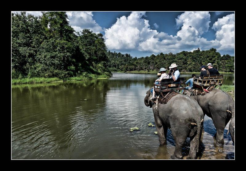 Elephant Water Stop