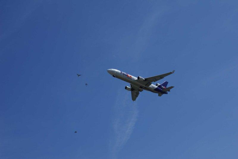 10 FedEx plane leaving Anchorage w dental chair.jpg