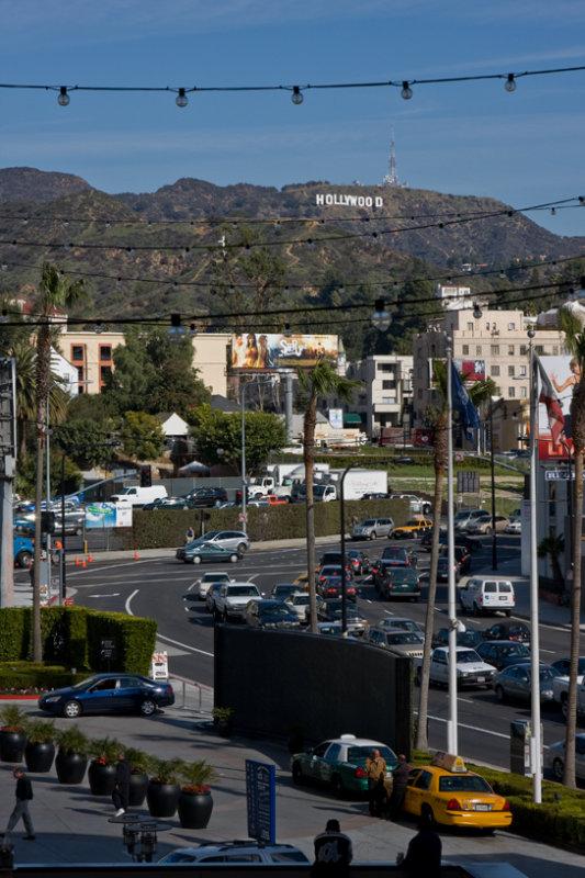 Hollywood 121.jpg