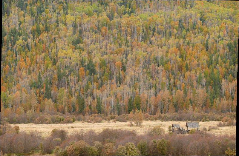 Hemp Creek hillside and barn10.jpg