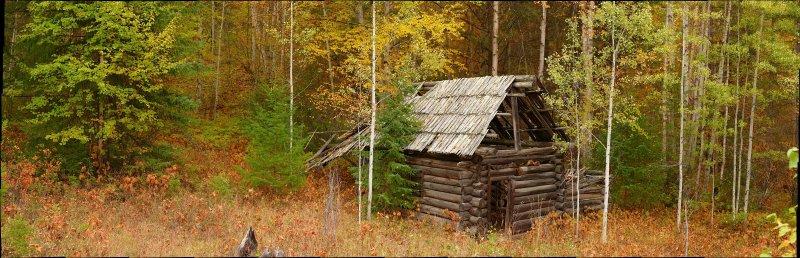 Moul cabin 12x5-10.jpg