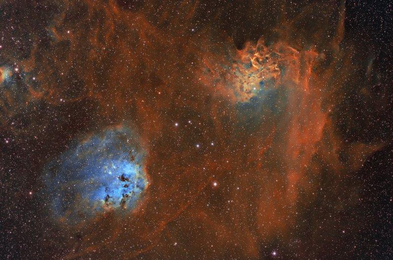 Tadpoles and Flaming Star Nebula