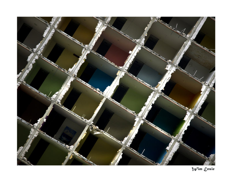 human honeycomb