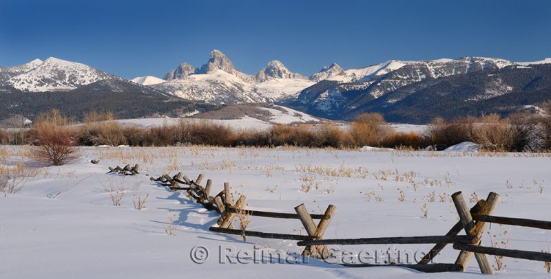 194 Buck and Rail Fence Tetons P.jpg