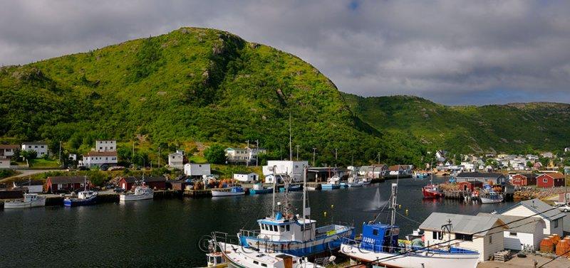 Panorama of Petty Harbour-Maddox Cove boats at docks Avalon Peninsula Newfoundland