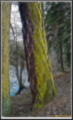 PICT4581 frac 1.jpg