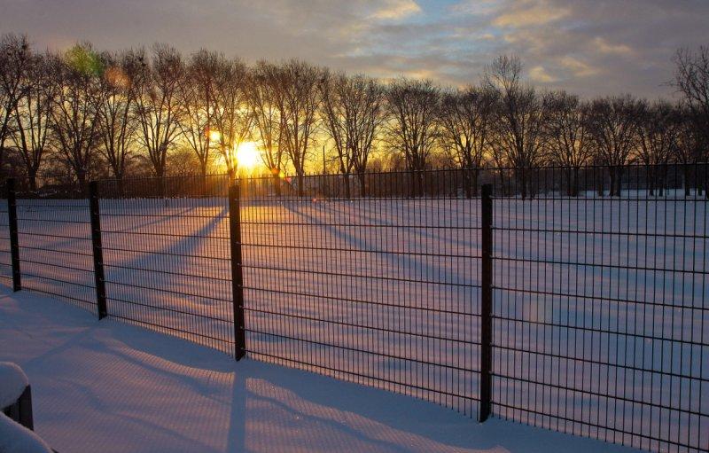 sun shining behind fences