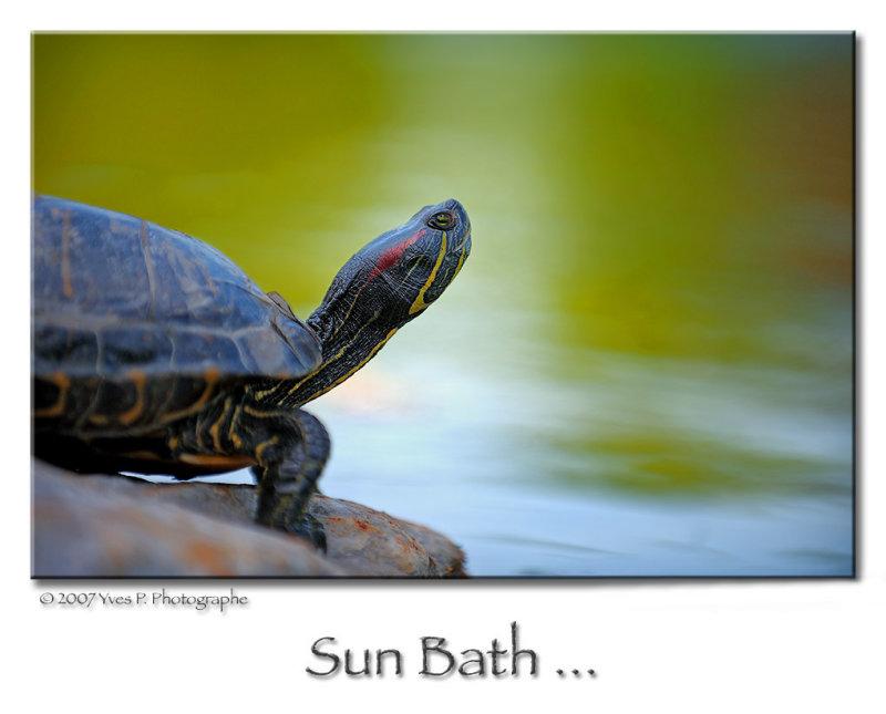 Bain de Soleil ...