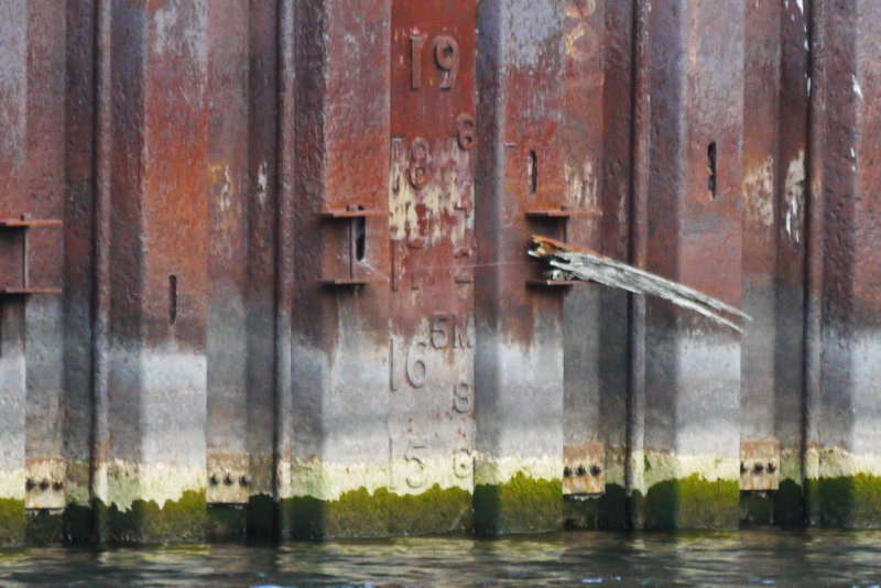 Shipyards Drydock Water Level - Sept 29, 2012 @ 1530