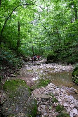 Creekbed.