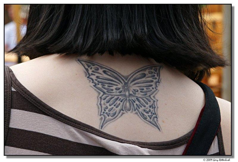 butterfly-8310-sm.JPG