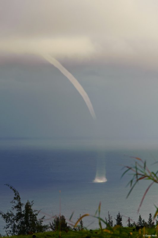 paauilo waterspout