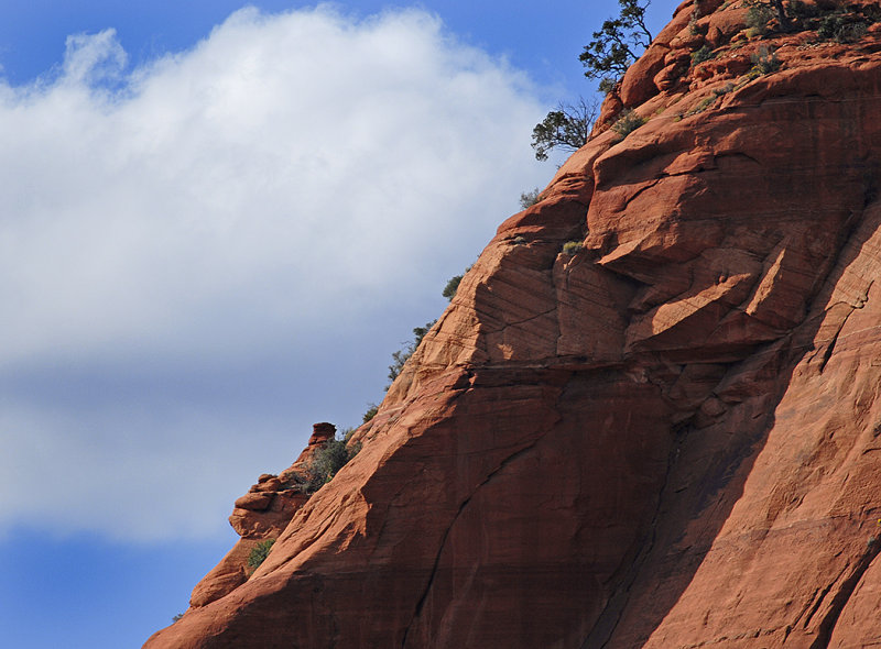 Cow Pies and Mitten Ridge Area