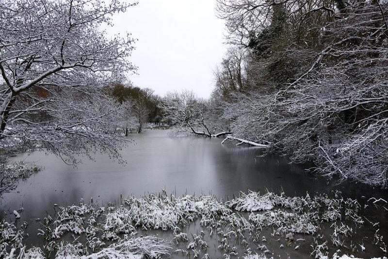 Hanworth Village Pond