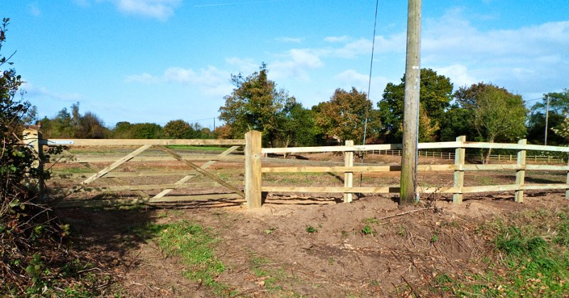 Vehicular Entrance Gate In New Fence